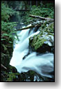 Sol Duc Falls, Olympic National Park, Washington